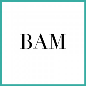 Blowout Bar by BAM a Lifestyle Partner of LUX Concierge by LUX Locators in Dallas TX